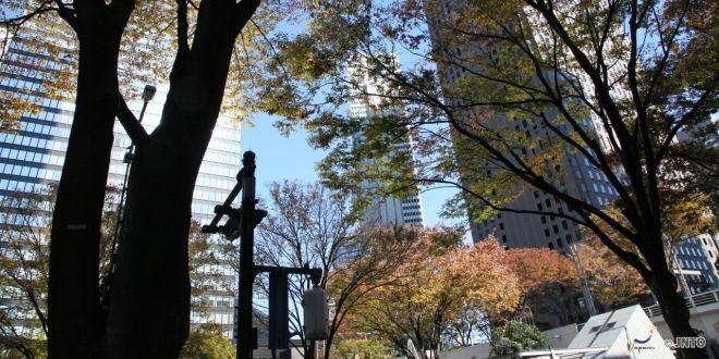 Benvenuto autunno in Shinjuku