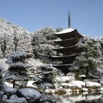 tempio-rurikoji-1