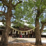 pace-in-un-tempio-shinto-1