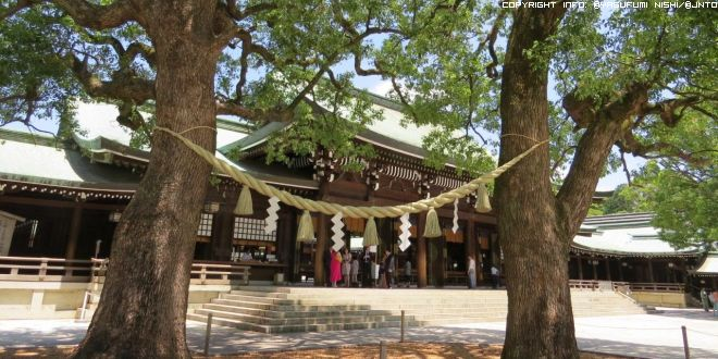 pace-in-un-tempio-shinto-2