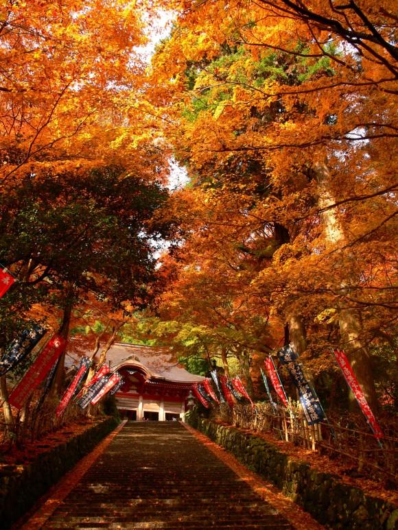 il-tempio-gakuen-ji-1