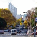 vita-urbana-autunno-1