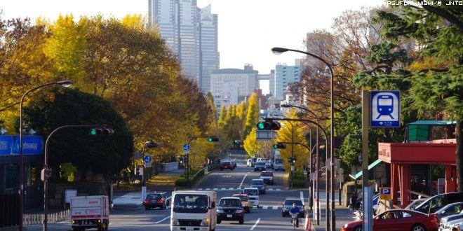 vita-urbana-autunno-2