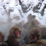 bagno-caldo-nella-neve-1