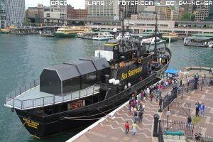 navi-baleniere-giapponesi-cacciano-nelle-aree-protette-1