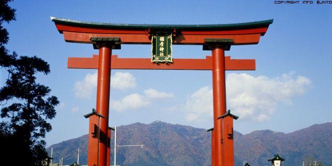 torii-yahiko-2