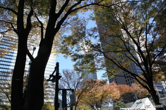 benvenuto-autunno-in-shinjuku-1