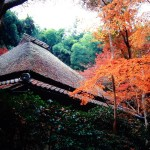 tempio-gionji