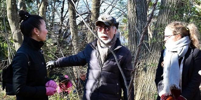 Hayao Miyazaki salva la foresta di Totoro