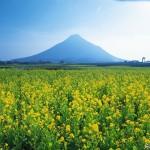 Il Fuji di Satsuma