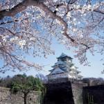 la-bellezza-del-giappone-in-primavera