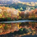 il-lago-di-jizonuma