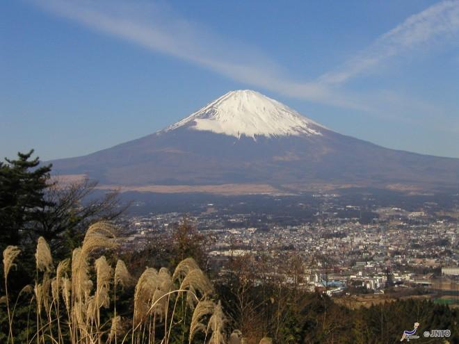 il-monte-fuji-da-shizuoka