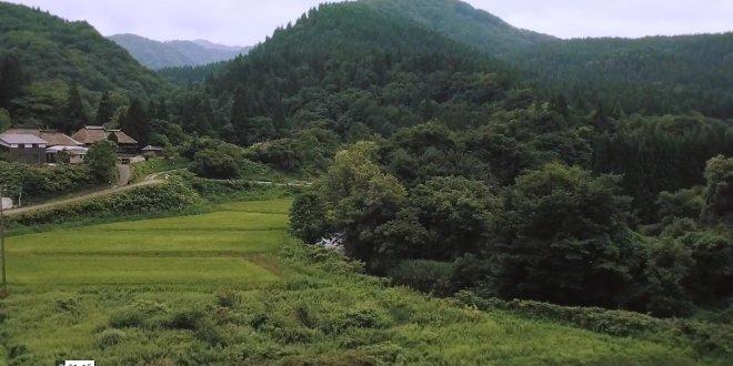 famiglia-natura-ad-akita