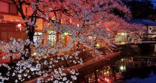 la-primavera-kinosaki