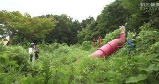 la-natura-si-riprende-fukushima
