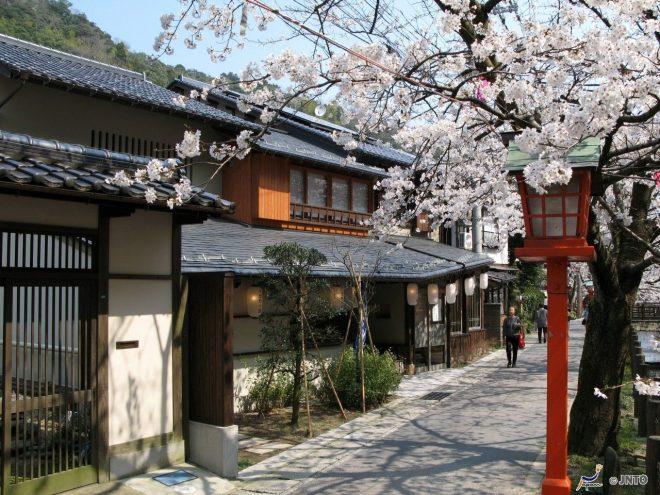 la-primavera-a-kinosaki