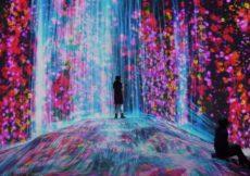 apre-il-museo-darte-digitale-a-tokyo