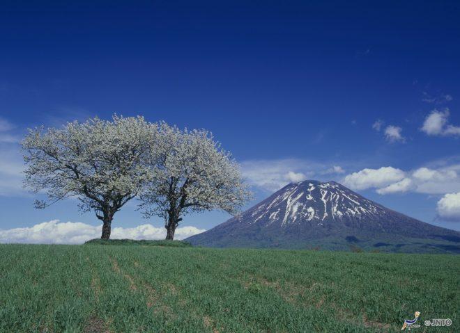 i-paesaggi-intorno-al-monte-yotei