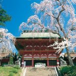 il-tempio-shiogama