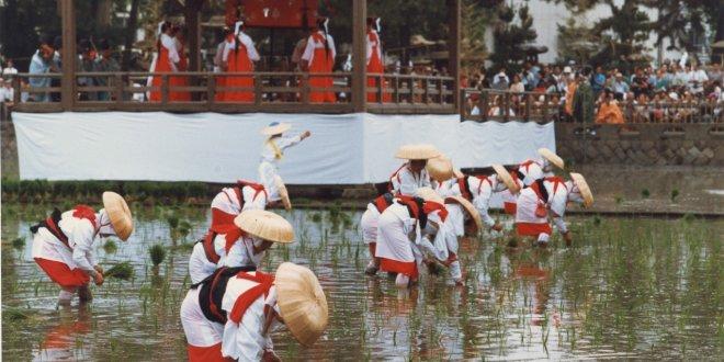 otaue-festival