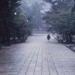 il-silenzio-del-todai-ji-temple