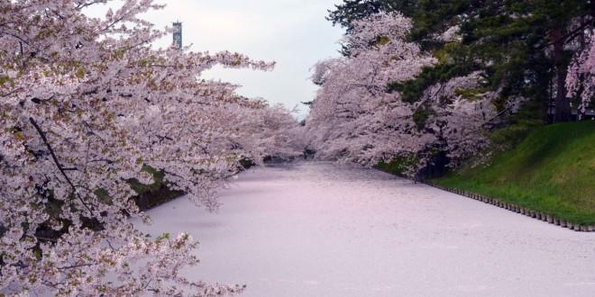 il-parco-di-hirosaki