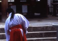Il Santuario Kasuga-Taisha