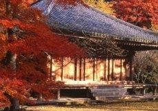 Il Tempio di Fuki-ji