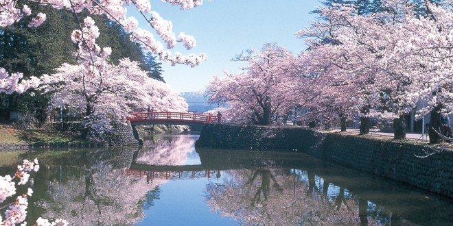 Il parco Tsuruoka