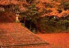 La storia del Tempio di Gakuen-ji