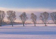 L'inverno a Ogata