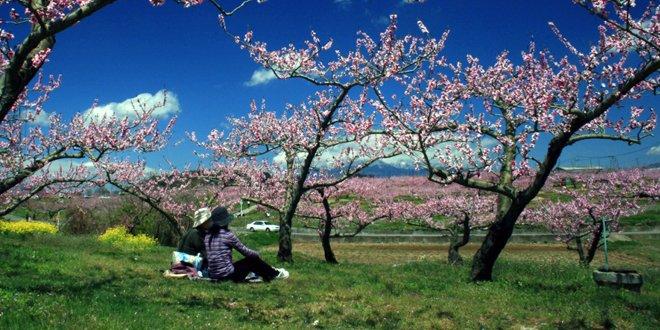 La primavera a Nirasaki