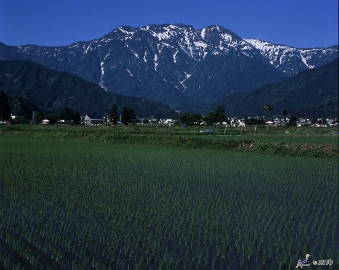 La forza del Monte Hakkai