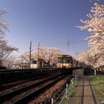Foto dal Giappone 2021