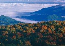 Il parco nazionale Towada-Hachimantai